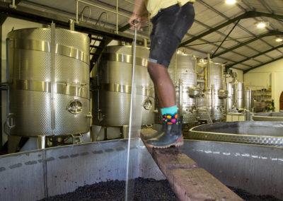 Nantes Wine 106 LR